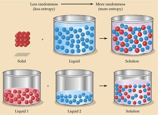 Is Energy Drink Homogeneous Or Heterogeneous