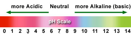 ph of orange juice lab write The ph scale is the range of ph values from 0 to 14 the paper that indicates the complete range of ph value from 0 to 14 is called the universal indicator ph paper is a strip of filter paper that is soaked in universal indicator and then dried.