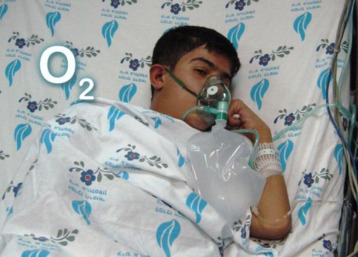 life with oxygen lab Compare your oxygen levels when you rest and when you exercise our lab performs several types of exercise tests supplemental oxygen evaluation oxygen helps your .