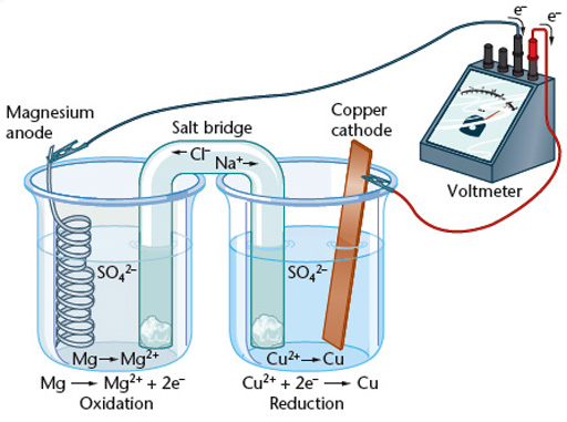 Lab 8 single replacement reactions magnesium and copper cell ccuart Gallery