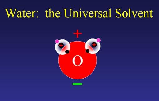 Universal solvent.
