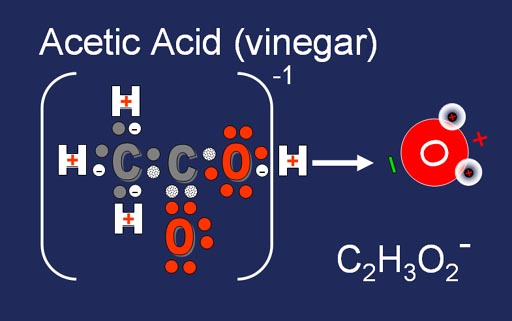 acetic acid in vinegar Acetic acid (vinegar) is an effective mycobactericidal disinfectant that should also be active against most other bacteria these findings are.