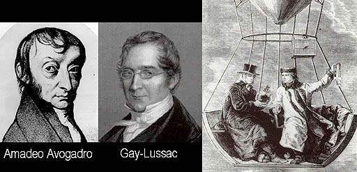 Lisa ann lesbian strapon