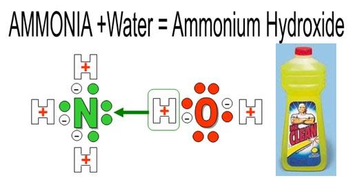 ammonia water 4 chemical and physical information 41 chemical identity at this concentration, ammonia forms a nearly saturated solution in water data on ammonia in aqueous solution, ammonium hydroxide, and ammonium ion are also included in table 4-1.