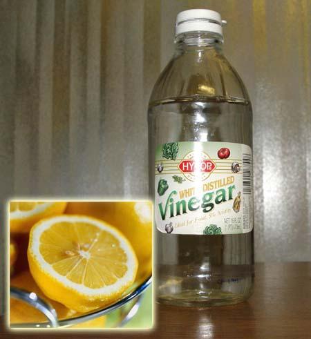 Acetic Acid In Vinegar. acetic acid