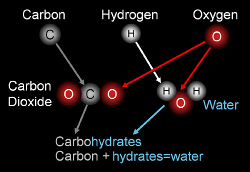 how do atoms make up organic compounds A molecule is an electrically neutral group of two or more atoms held together by chemical bonds molecules are distinguished from ions by their lack of electrical charge.