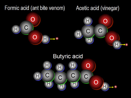 Building Organic Compounds